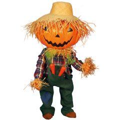 Halloween Pumpkin Boy