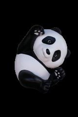 Panda Cub Laying