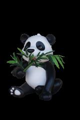 Panda Cub Eating Bamboo