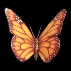 Big Orange Butterfly