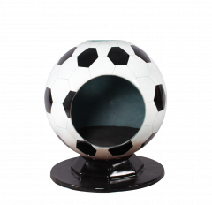 Soccerball Photo Op
