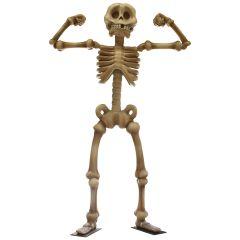 Giant Flexing Skeleton