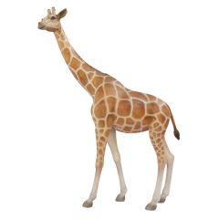 Life Size Giraffe Statue