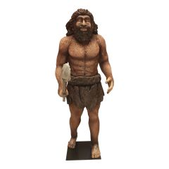 Neanderthal statue of a man with speer made from fiberglass.