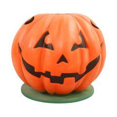 Pumpkin Photo Op