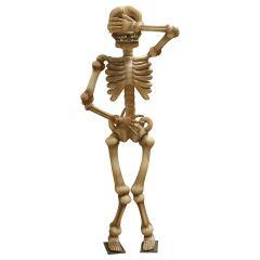 Giant Shy Skeleton
