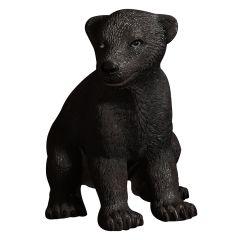 Sitting American Black Bear Baby