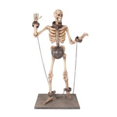 "Skeleton 180 ""Chain"""