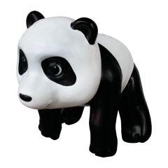 Panda Cub on Adventure