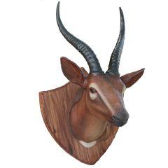 Gazelle Trophy head