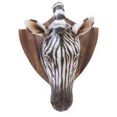 Zebra Trophy head
